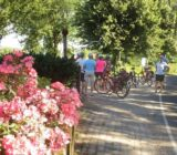 Pause in Asselt im Norden von Roermond